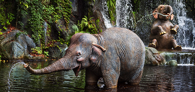Elephants playing in the water at Jungle Cruise at Magic Kingdom Park.