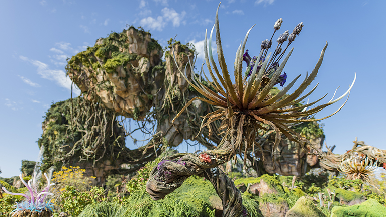 Plants in Pandora the World of Avatar at Disney's Animal Kingdom theme park