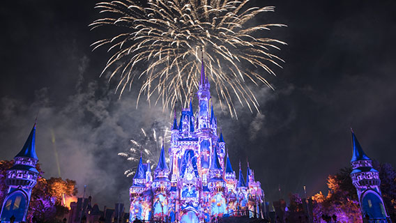 The night-time spectacular, Happily Ever After at Magic Kingdom