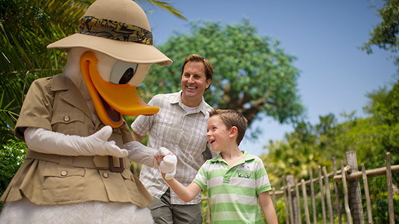 Little boy meets Donald Duck at Disney's Animal Kingdom